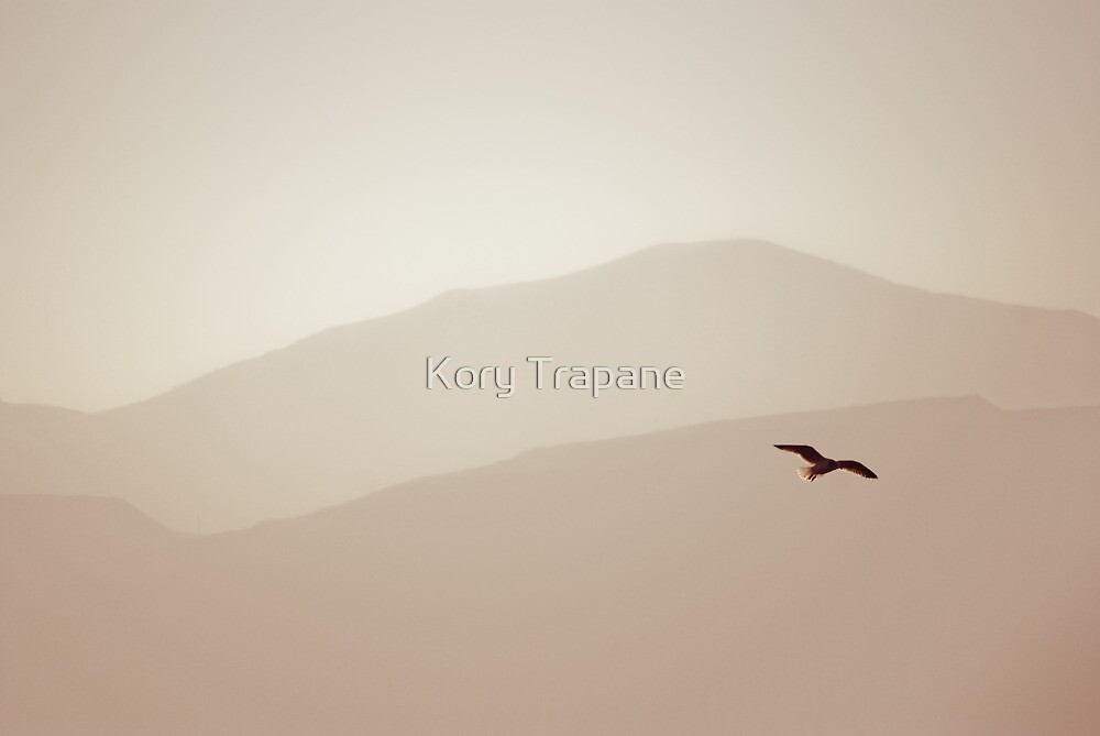 Flight by Kory Trapane