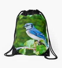 Blue Jay Drawstring Bag