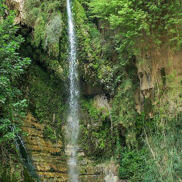 Israel, Dead Sea, Ein Gedi national park the waterfall in Wadi David by PhotoStock-Isra