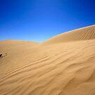 White dunes of Australia by Elena Martinello