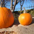 Pumpkins on a bale at Conner Prairie by Artophobe