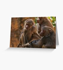 """""""monkey business"""" Greeting Card"""