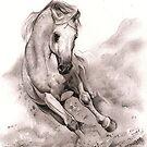 a horse by Alleycatsgarden