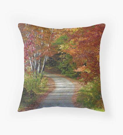 New Hampshire Foliage 2008 #8 Throw Pillow
