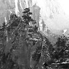 Trail to Angels Landing by Robert C Richmond