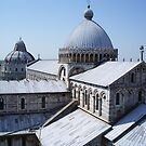 View from the Tower of Pisa by Lael Woodham