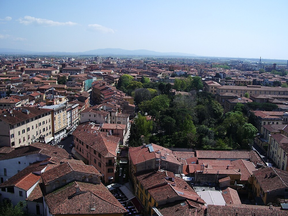 Pisa City, view from above by Lael Woodham