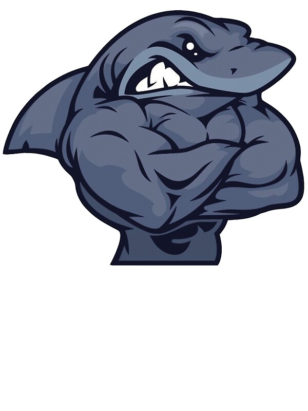 Quot Muscle Shark Quot Stickers By Matthewtri Redbubble