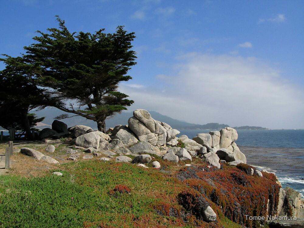 Monterey Beach 2 by Tomoe Nakamura