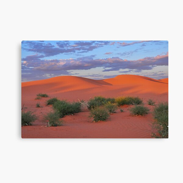 Dunes and Paddy Melons Canvas Print