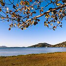 A view of Lagoa da Conceicao in Florianopolis, Brazil by Helissa Grundemann