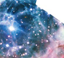 Thor's Helmet Nebula | Space Kitty Sticker