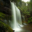 Russell Falls by Alex Wise