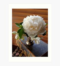 White Peony with the Old Family Bible Art Print