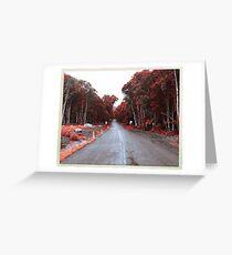 Wollongong.  Greeting Card