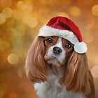 Drawing Dog breed Cavalier King Charles Spaniel  in red hat of Santa Claus by bonidog