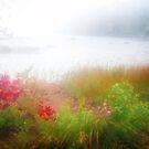 Herbst Nebel auf Eagle Lake von Anita Pollak