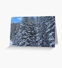 Snowy Trees in Austria Greeting Card