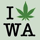I [weed] Washington by TVsauce