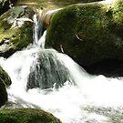 Rushing water by danabee