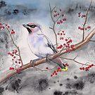 Waxwing with winter berries by Liz Mattison