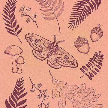 Herbst von lauragraves