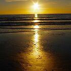 SUN FOOTPRINTS by NICK COBURN PHILLIPS