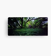 Pinhole Study: Shaded Gem by The Grand River Canvas Print