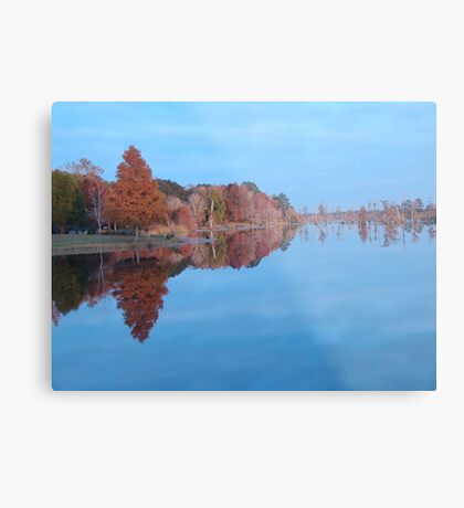 Cypresses on the Point - Autumn Metal Print