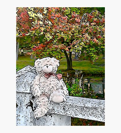 Teddy Bear by the Pond in Autumn Photographic Print