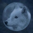 In a Blue Moon by Sandy Keeton