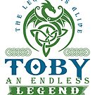 Legend T-shirt - Legend Shirt - Legend Tee - TOBY An Endless Legend by wantneedlove