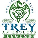 Legend T-shirt - Legend Shirt - Legend Tee - TREY An Endless Legend by wantneedlove