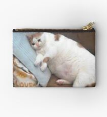 Sad Cat On A Couch Studio Pouch
