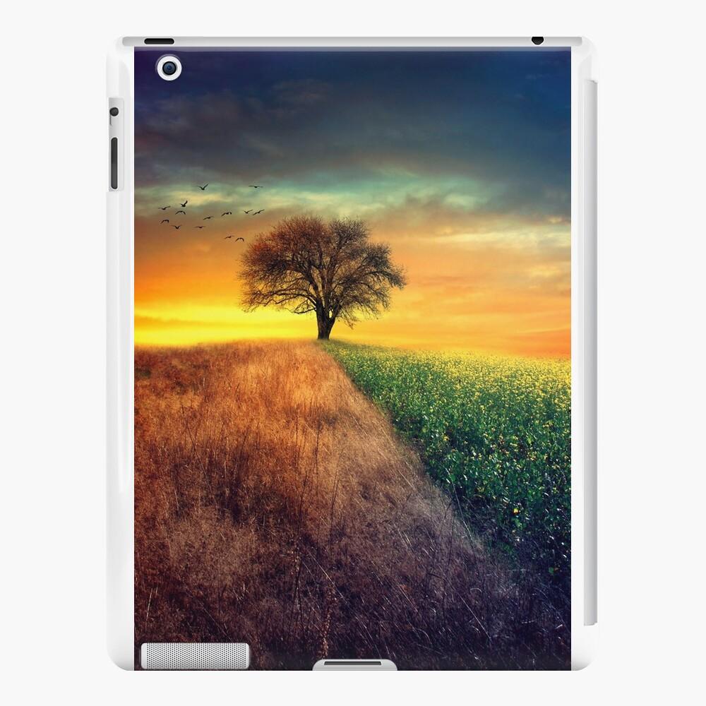 I wonder iPad Cases & Skins