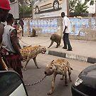 dog killers by octaviusmiller