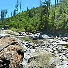 American River Rocks by Joe Lach