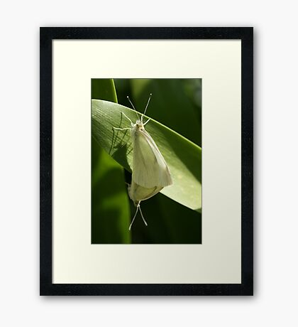 What can i say....... Framed Print