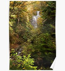 Hertz Trail Waterfall Poster