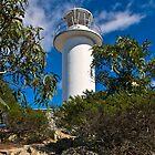 Cape Tourville Lighthouse at Freycinet by Yukondick
