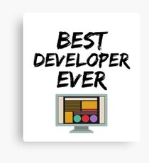 Developer Best Ever Funny Gift Idea Canvas Print