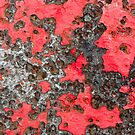 Lava Flow by Shelley Heath