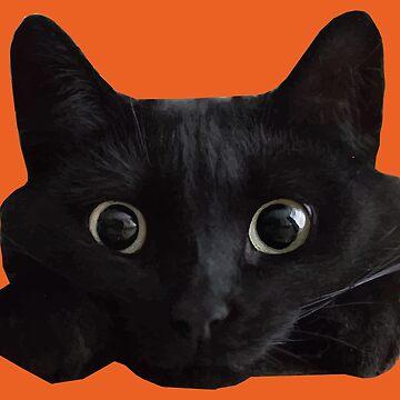 Black Cat Face  by desexperiencia