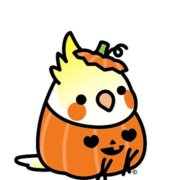 Halloween Costume Cockatiel Scootaloo by birdhism