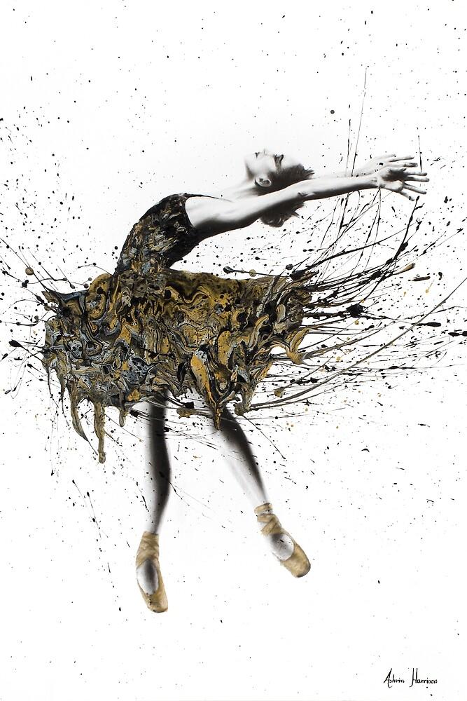 Black Swan Night by Ashvin  Harrison