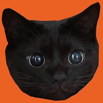 Black Cat Face 2 by desexperiencia