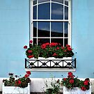 Window With Geraniums by Lesliebc