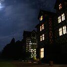 Gregynog at Night by awoni