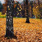Deep autumn by Antanas