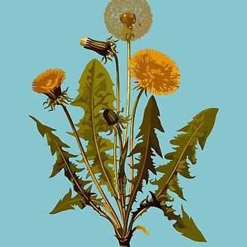 Dandelion Weed by miniverdesigns